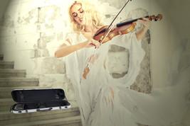NEW TONARELI Fiberglass Violin 4/4 OBLONG Hard Case SILVER  w/ straps & ... - $249.00