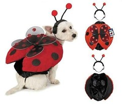 Ladybug Dog Costume - Adorable Plush Winged Red & Black 2 Piece Cute as ... - $30.58+