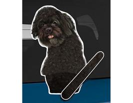 Portuguese Water Dog rear window wiper wagging tail sticker - $12.99