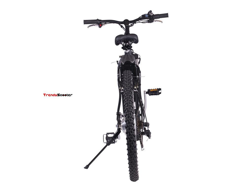 Electric Bicycle Alpine X-Treme