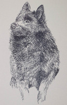 Schipperke Dog Breed Art Print Signed Lithograph #79 Kline adds dog name... - $49.95