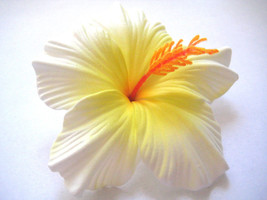 Hawaii Bridal Wedding Party Life-like Hibiscus QTY ( 2 ) Flower Hair Clips - €10,54 EUR