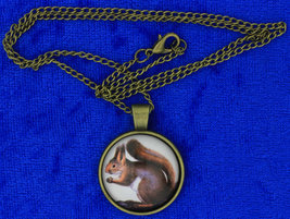 Squirrel Necklace Cute Cabochon Chain Style Length Choice - $4.99+