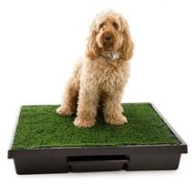Dog Training Supplies Pet Potty Pad Box Turf Indoor Toilet Unit Clean Ca... - $146.51