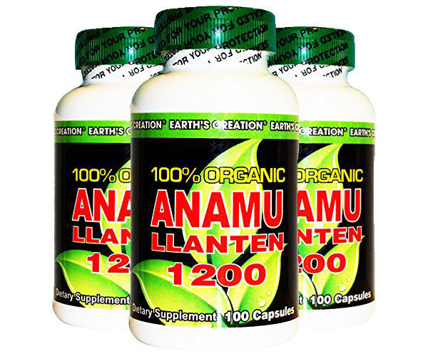 Anamu Llanten 1100mg - 100% Organically Grown - 100 Capsules by Earth's Creation