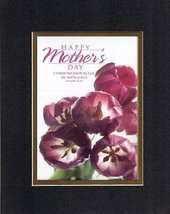 Happy Mother's Day - Proverbs 31:30. . . 8 x 10 Inches Biblical/Religious Ver... - $9.85