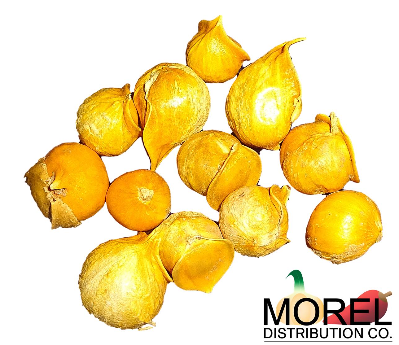 Ajo Japones Japanese Garlic 100 Natural 150 250 400 Per Bag