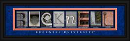 Bucknell University Officially Licensed Framed Letter Art  - $39.95