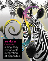 ZEBRA: Unique Blank Animal Philosophy Card - $3.25