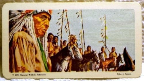 Indians of Canada Tea Card #24 Near Mint War Party Red Rose 1974