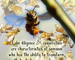 Bee 570 thumb155 crop