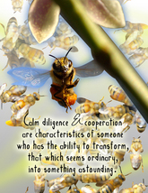 BEE: Unique Blank Insect Philosophy Card - $5.00