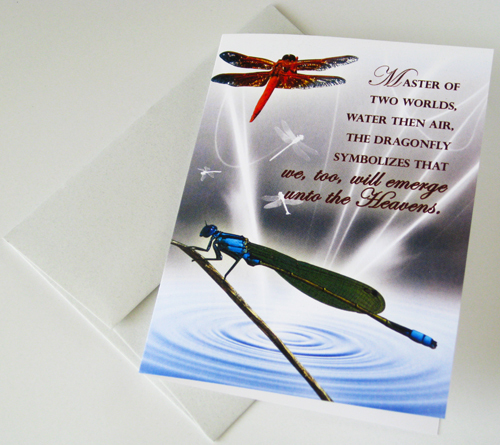 DRAGONFLY: Unique Blank Insect Philosophy Card