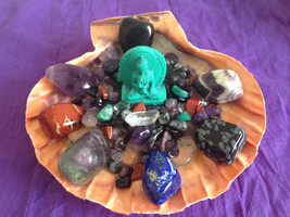 "Seashell Crystal Healing House Kit "" Positive, Uplifting and Protective Energy"" - $84.00"