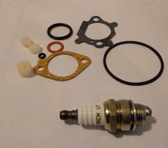 Carburetor Kit replaces Briggs & Stratton 498261 w/Spark plug - $5.99
