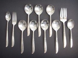 Lot 11 Pieces Oneida WILDWOOD I-Always Silverplate Soup Sugar Spoon Meat Fork - $56.00