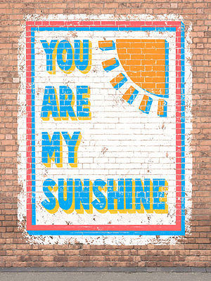 You Are My Sunshine Humor Vintage Distressed Shabby Chic Decorative Metal Sign