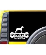 Catahoula Bone L113 8 inch Sticker Louisiana catahoula dog decal - $4.99