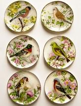 DOLLHOUSE 6 Lg. Plates Bright Birds w Flowers CDD513 By Barb Wall Art Miniature - $30.97