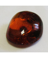 Amber Baltic Orange Polished 23x21mm 14.74ct With Fly and Ant - $75.55