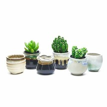 goldblue Succulent Pot Ceramic Succulent Plant Pot Cactus Plant Pot Flow... - $10.92