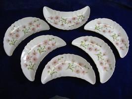 Old Nuremberg Bavaria Germany Floral Bone Dish Porcelain Pink Daisies Lo... - $39.27