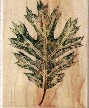 Rubber Stampede A2488F Oak Tree Leaf Mounted Rubber Stamp - $7.91
