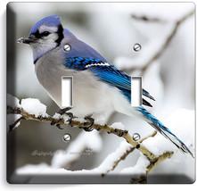 Blue Jay Bird Winter Snow Bluebird Light Double Switch Wall Cover New Room Decor - $10.77