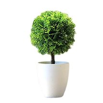George Jimmy Artificial Plastic Mini Plants Grass Flower with Pot for Home Decor - $17.40