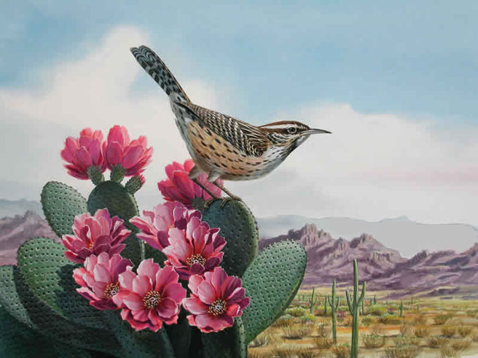 Primary image for Bird Cactus Wren Cross Stitch Pattern***L@@K***