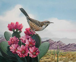 Bird cactus wren cross stitch pattern thumb155 crop