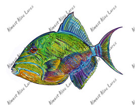 High Quality Vinyl Fish Decal Queen Triggerfish - $5.99 - $8.99