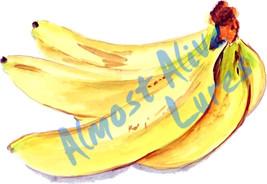 Bananas Fruit Vinyl Decal Sticker - Auto Car Tr... - $5.99 - $8.99