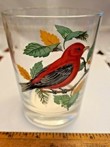 VINTAGE HAND PAINTED SCARLET TANAGER OLD FASHION GLASS West Virginia Glass Spec.