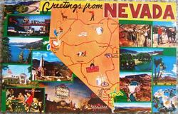 VINTAGE GREETINGS FROM NEVADA Souvenir POSTCARD 8532G