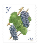 2016 5c Deep-Purple Pinot Noir Grapes, Coil Scott 5038 Mint F/VF NH - $18,87 MXN