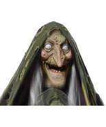 Spooky Life Size ANIMATED SWAMP HAG RISING Talk... - $188.07