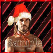 Avatar Hunky Christmas Digital Designed Pro Quality - $3.00
