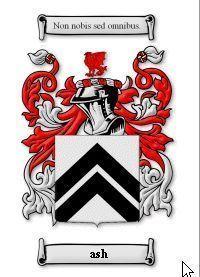 Ash Coat of Arms Ash Family Crest History Print Bonanza