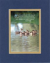 Inspirational Plaques - Hast thou not known? Hast thou not heard, that the everl - $11.14