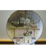 "Royal Worcester Collector Plate - ""Two Against One"", Kittens & Puppy - 1989 - $8.00"