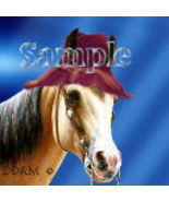 Avatar Horse with hat Digital Designed Pro Quality - $3.00