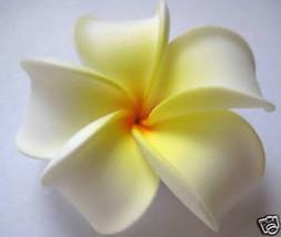 Hawaiian Hawaii Flower Bridal Wedding Favor Party Plumeria QTY ( 2 ) Hai... - €7,90 EUR