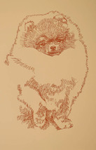 Pomeranian Dog Art Word Drawing Print #48 Kline draws your dogs name fre... - $49.95
