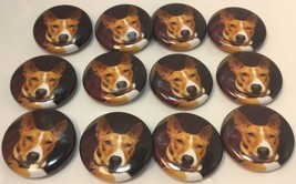"Set Of 12""Red Basenji Face"" Fridge Magnets/ 12 ... - $15.17"