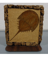 Vintage Retro Mid-Century Horseshoe Crab Cork and Wood Grain Look Bookend - $18.95