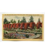 Royal Rose Arbor Court of Rose Festival Lambert Gardens Portland Oregon - $0.99