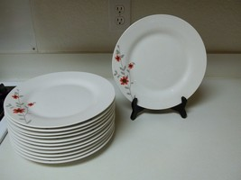 Royal Norfolk ~ Set of 12 Dinner Plates ~ White with Red Flowers Grey Leaves  - $98.99
