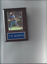 Tim Raines Plaque Montreal Expos Baseball Mlb - $0.49