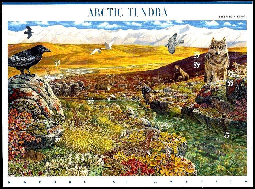 2003 37c Arctic Tundra, Sheet of 10 Scott 3802 Mint F/VF NH